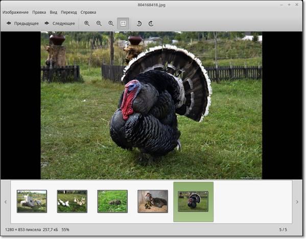 просмотр фото в линукс
