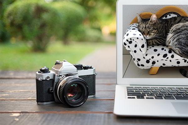 свободный фотограф